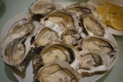 2013-02-14 Oyster 001